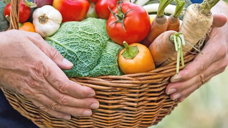Nota Pública sobre Políticas de Erradicação da Fome