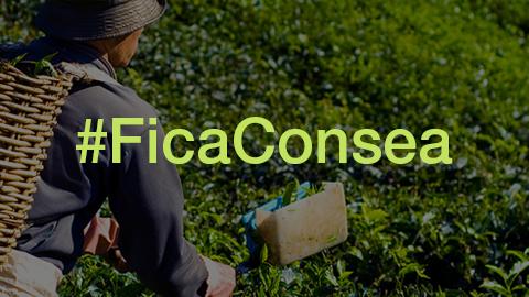 #FicaConsea: Mobilização contra a extinção do Consea