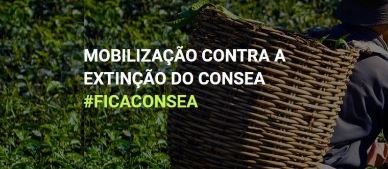O CONSEA QUE QUEREMOS, O CONSEA QUE O BRASIL PRECISA